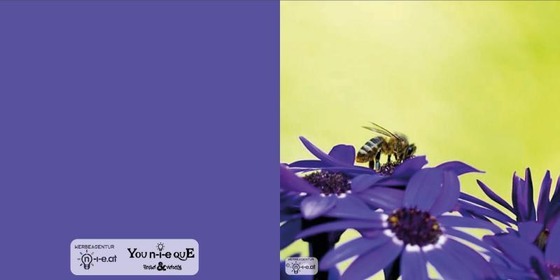 Bienenhunger